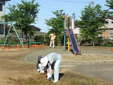 わんぱく公園清掃2