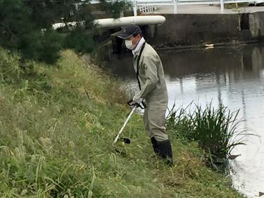 河川敷清掃4