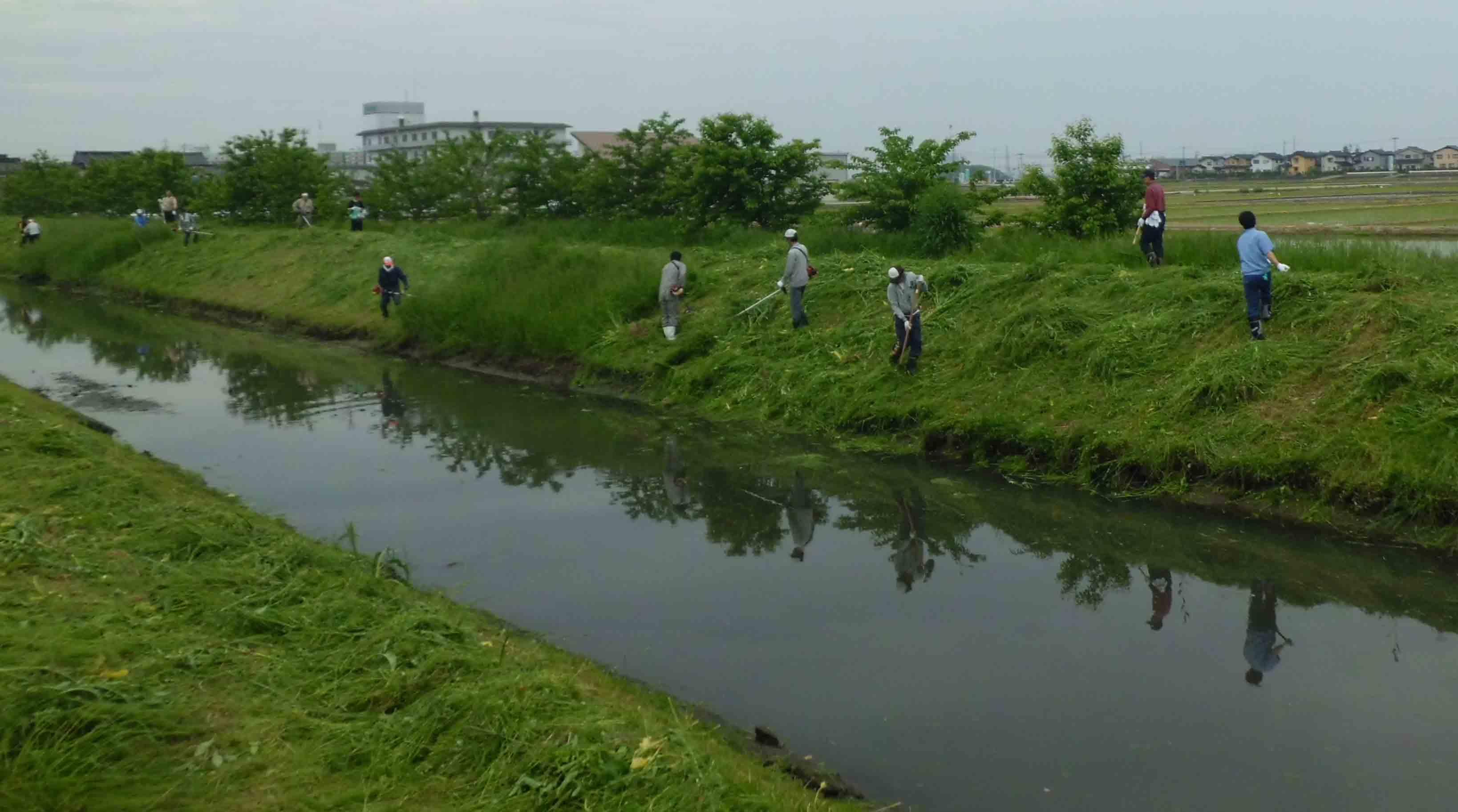 河川清掃作業