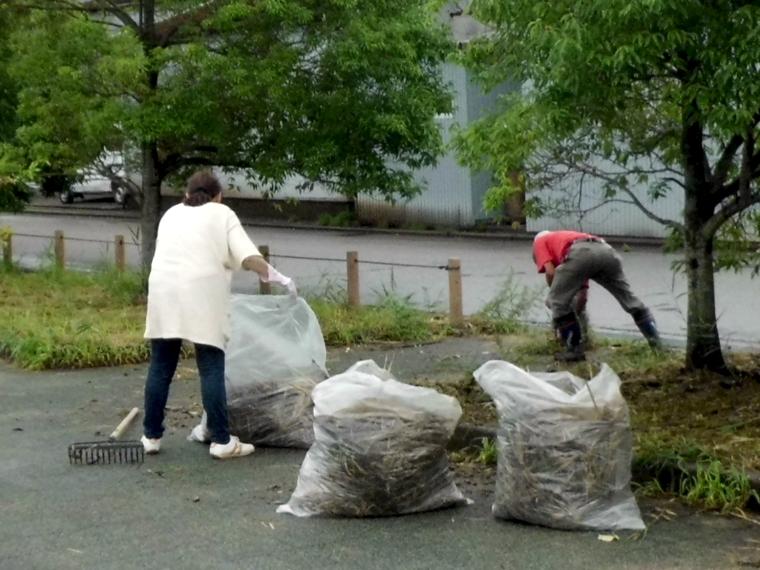 公園清掃4