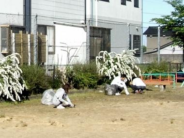 わんぱく公園清掃7